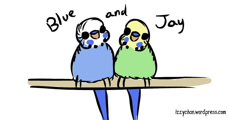 budgies for adoption in florida