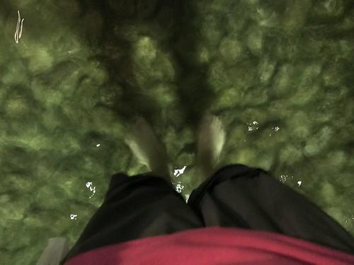 御手洗池に足をつける