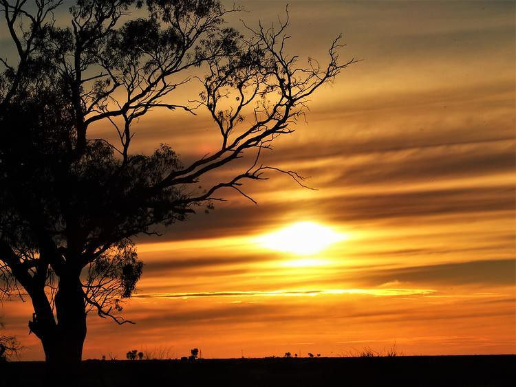 Sunset via Deniliquin, New South Wales