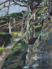 Path to Point Lobos