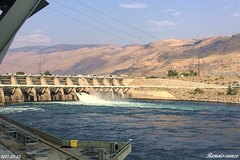 Rocky Reach Dam - Fish Ladder and Museum