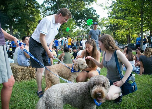 More scenes from O-week and most importantly, the presidential pups, Cricket and Scout, made (what we hope) is the first of many official appearances on campus! #pictureduke #dukestudents #dukeuniversity #labradoodlesofinstagram