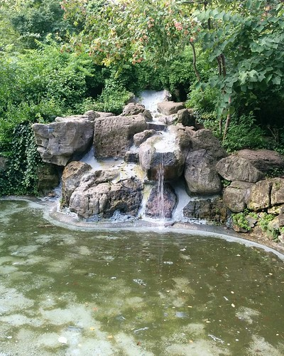 Waterfall and pond #toronto #parks #ravine #beaches #ivanforrestgardens  #waterfall #pond