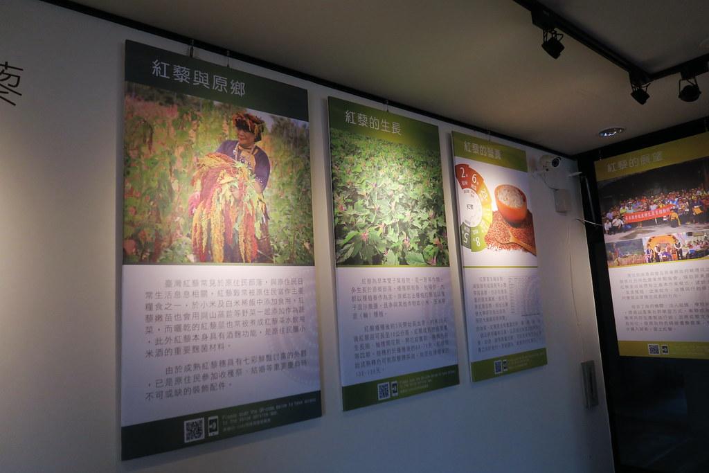 紅藜故事館 (4)
