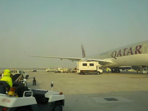 カタール航空しかいなくて面白くない