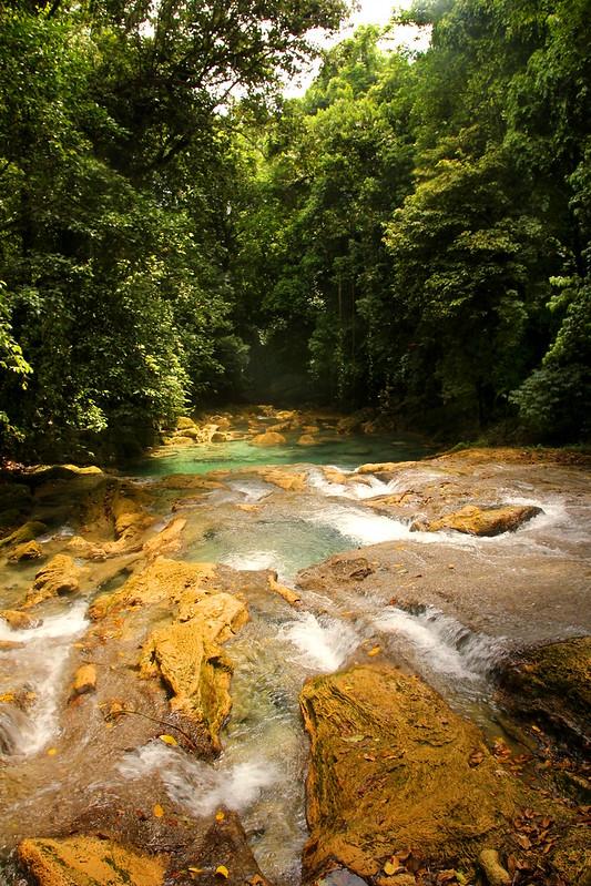 Jamaica 17 - Reach Falls