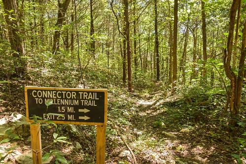 Edgar Evins SP - Millenium Trail