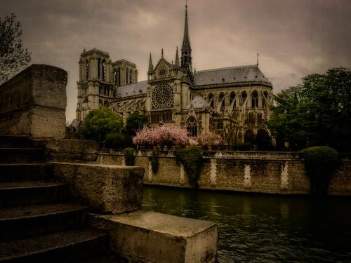 Notre-Dame Cathedral, Paris, 2016