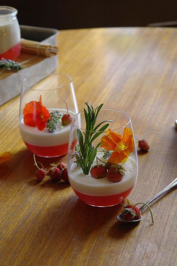 basil panna cotta with rhubarb cardamom jelly | ten.times.tea