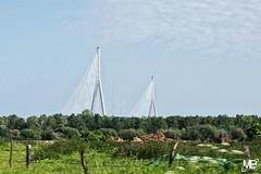 le pont de Normandie DxOFP AgfaUC100_DSF1924