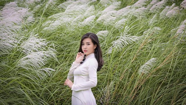 co lau duoi ga - Linh Van Dinh (7)
