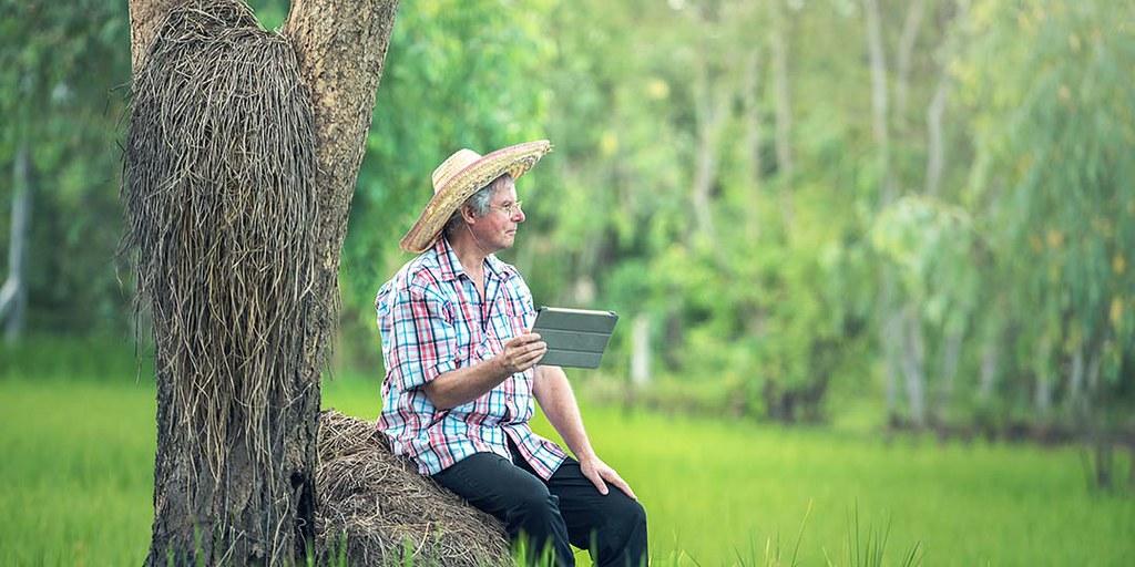 老農夫在樹下看平板電腦