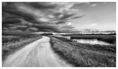 storm thunderstorm clouds dark dirt road lake pond vanishing point viera wetlands ritch grissom memorial brevard county space coast melbourne rockledge cumulus sony a6300 1018mm monochrome landscape black white unpaved swamp cumulonimbus
