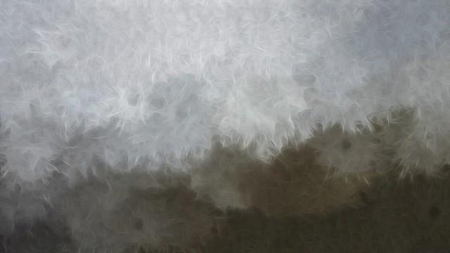 Free Texture By Tóta.