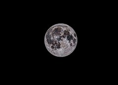 Moon Phase (Waning Gibbous) August 7th 2017