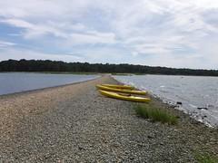 日, 2017-08-06 14:35 - Taylor's Island, Coecles Harbor, Shelter Island