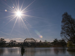The Palm House And Lake - Kew Gardens
