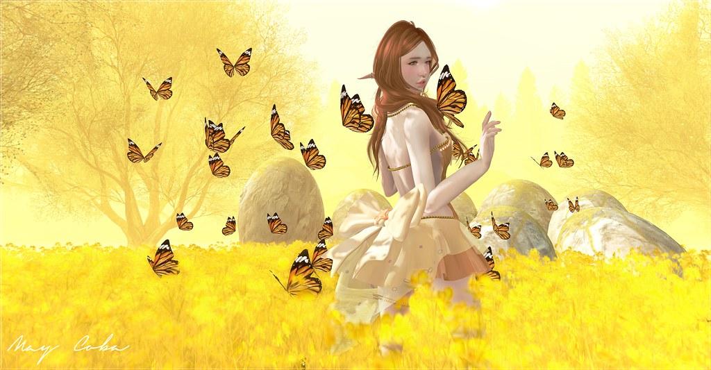 Sugar Fairy