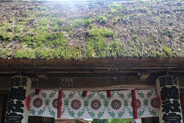 hitachisousyagu052