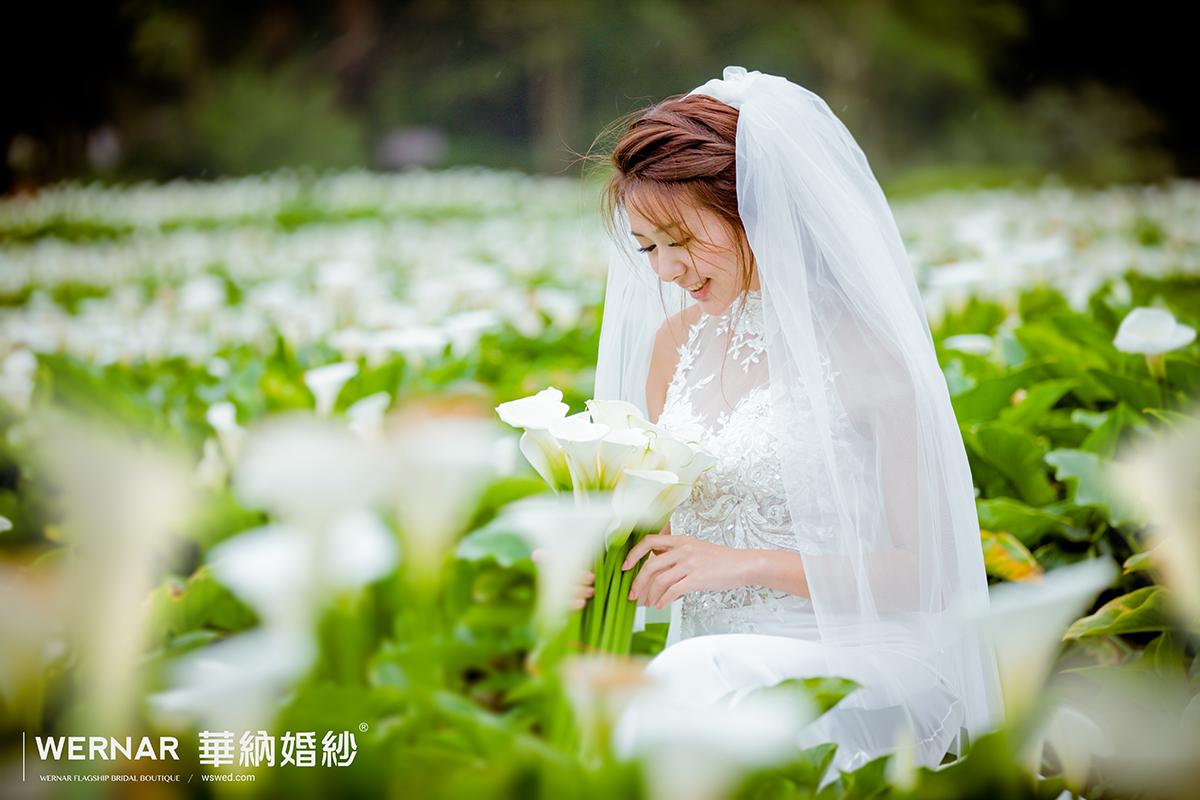 婚紗攝影,自主婚紗,婚紗照,婚紗推薦,季節限定,花海婚紗