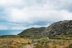 Upper trail on Bray Head