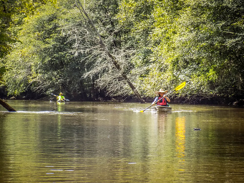 Lynches River with Lowcountry Unfiltered-5