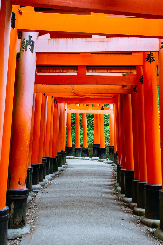 20160526_Kyoto_Japan_3436