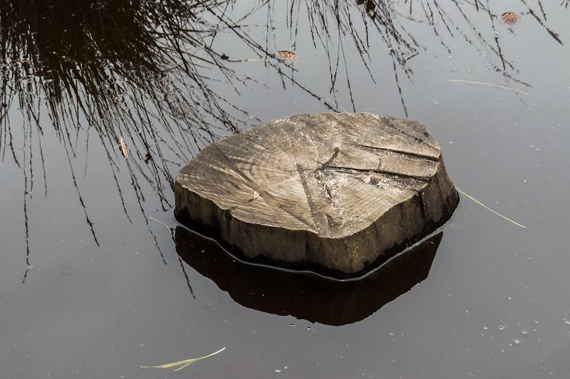 Log in the stream