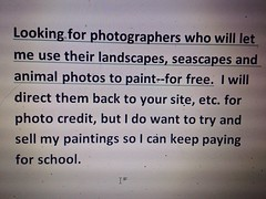 Looking for photos of animals, seascapes and landscapes for me to paint.