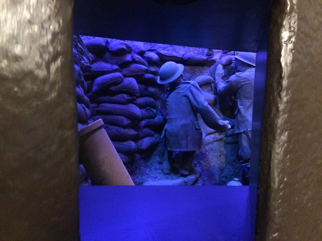 View into the trench
