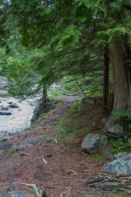 The Shallows Trail