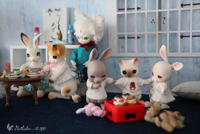 ✰ Ma famille de kitsune (p. 20) - Page 12 36872283790_60e0287430_z