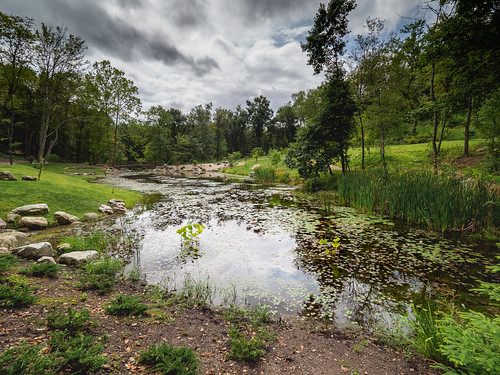 landscape pond pittsburghbotanicgarden oakdale pennsylvania unitedstates us