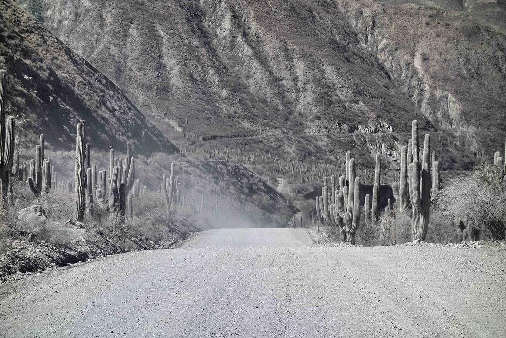 Road Tren de las Nubes 4