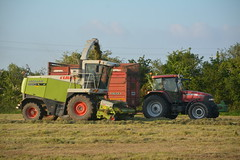 Claas Jaguar 890 SPFH filling a Redrock Trailer drawn by a Case IH MXM 140 Tractor