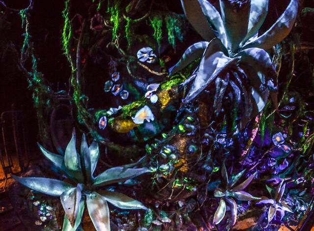 Pandora cave plants FoP AK
