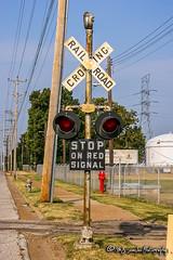 Crossing Signal   CSX Memphis Subdivision