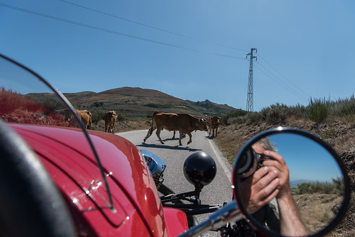 Road Trip-17741