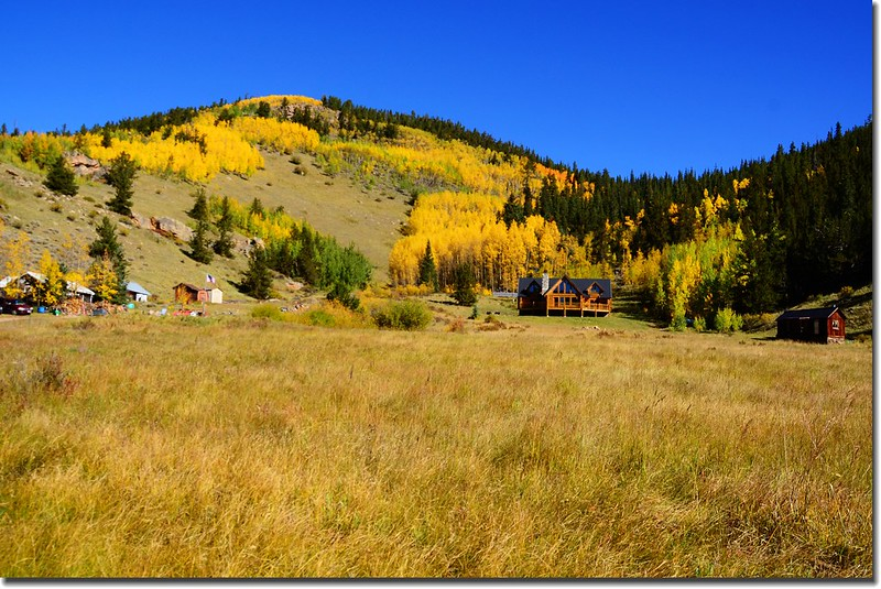 Fall colors, Guanella Pass, Colorado (35)