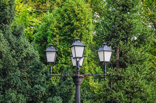 iasi romania lantern park urbannature