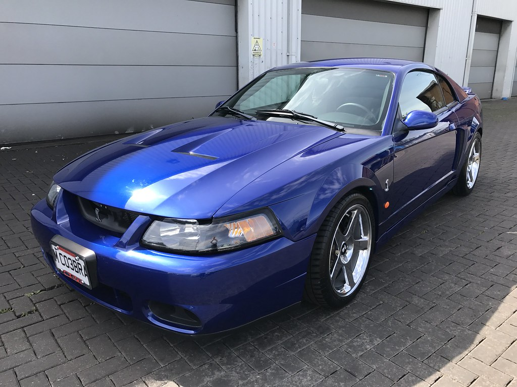 for sale mustang svt cobra terminator 2003 sonic blue. Black Bedroom Furniture Sets. Home Design Ideas