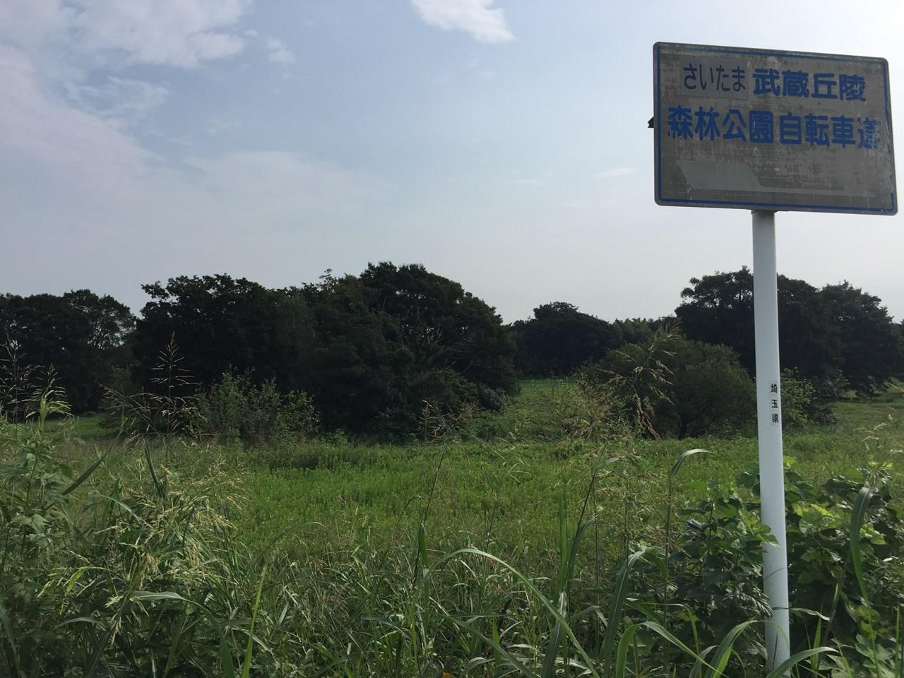 20170826_Arakawa Long Run (22)