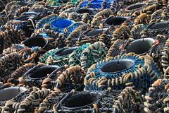 Trap fishery