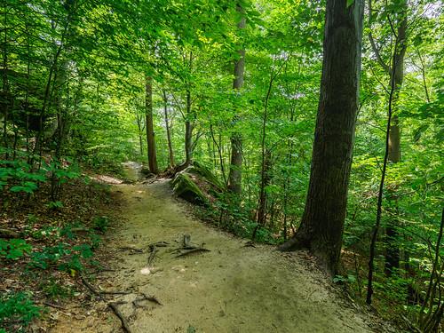landscape virginiakendall ledges park cuyahogavalleynationalpark recreation landsacpe area peninsula ohio unitedstates us