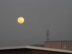 Moon rising 1.