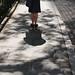 Eclipse shadows by Adam Ames