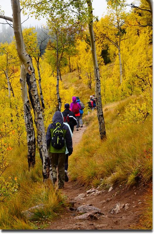 Colorado Trail (5)