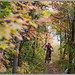 Perfect Fall Mountain Biking by Photo-John