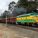 4201, 4490 6L61 Mittagong by trainman3801