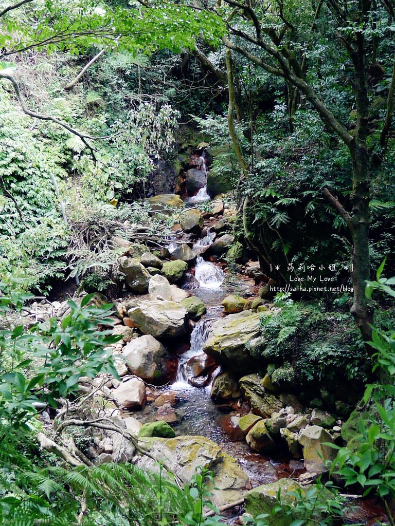 陽明山一日遊景點推薦絹絲瀑布步道 (9)